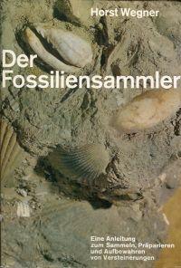 Der Fossiliensammler.